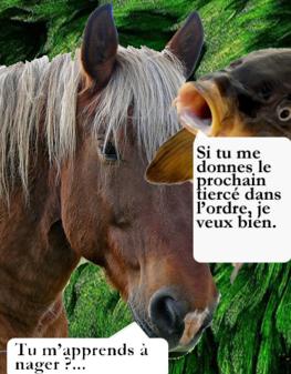 cheval_carpe