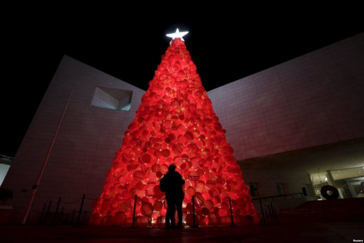 Mexique, Monterrey, sapin rouge
