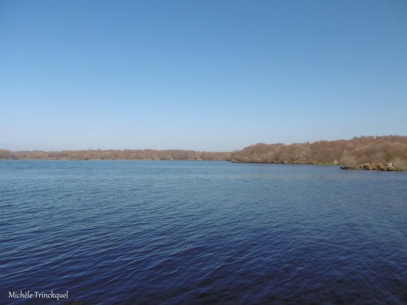 """Une balade à """"mon"""" Lac de LEON (40), le 23 février...."""