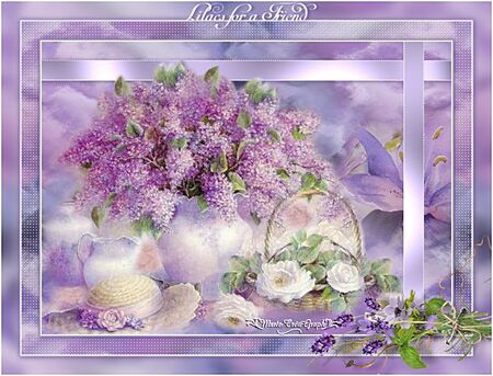 Lilas for a Friends