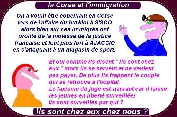 Des nouvelles de la France effondrée, même en Corse tu n'es plus tranquille!