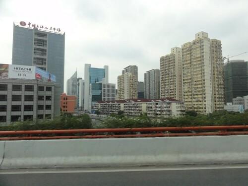 Jour 7: Aquarium et Shangai