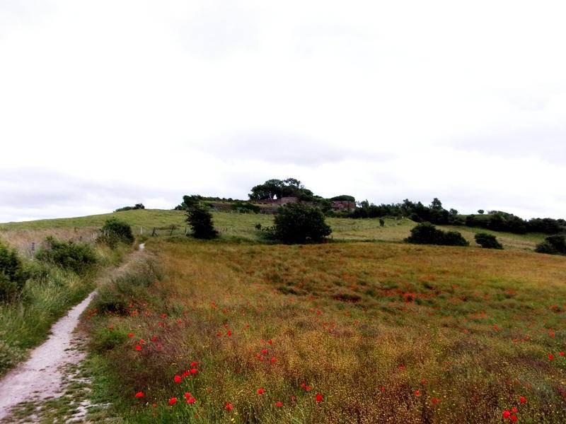 Aujourd'hui : Retour dans les châteaux au bord du Cher, à Selles et Montrichard