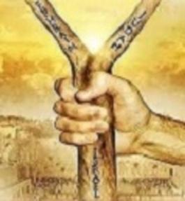 Le Royaume de Dieu (2): le greffage