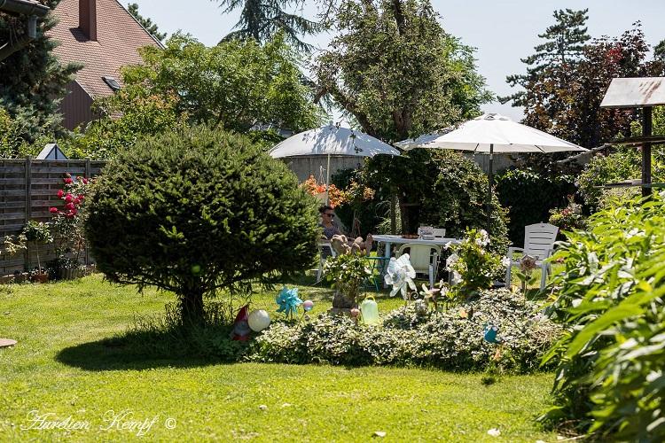 Ingersheim : Photos de mon anniversaire