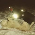 Kosetid med hunder på natt i naturen på 78¤Nord #friluftsår #2015 #Svalbard #huskies #FÅ15 #nattinaturen #kosetid #Endalen #-10¤C #50hunder #60person