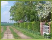 Le jardin coté chemin