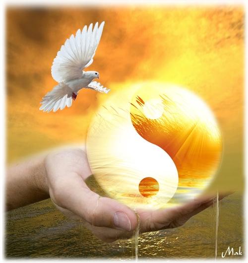 Un équilibre, une harmonie… Partout dans ma vie