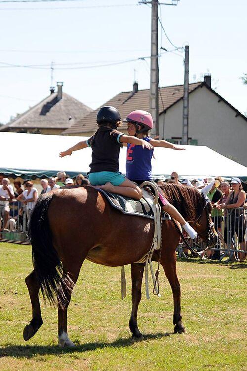5ème journée de la fête du cheval: 30 août 2015