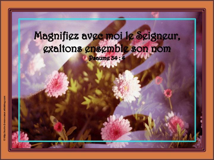 Magnifiez avec moi le Seigneur - Psaumes 34 : 4