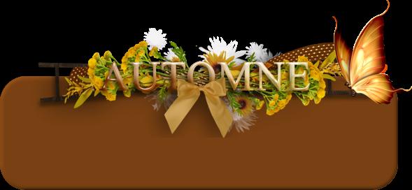 Kit Automne