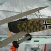 Focker D-VII