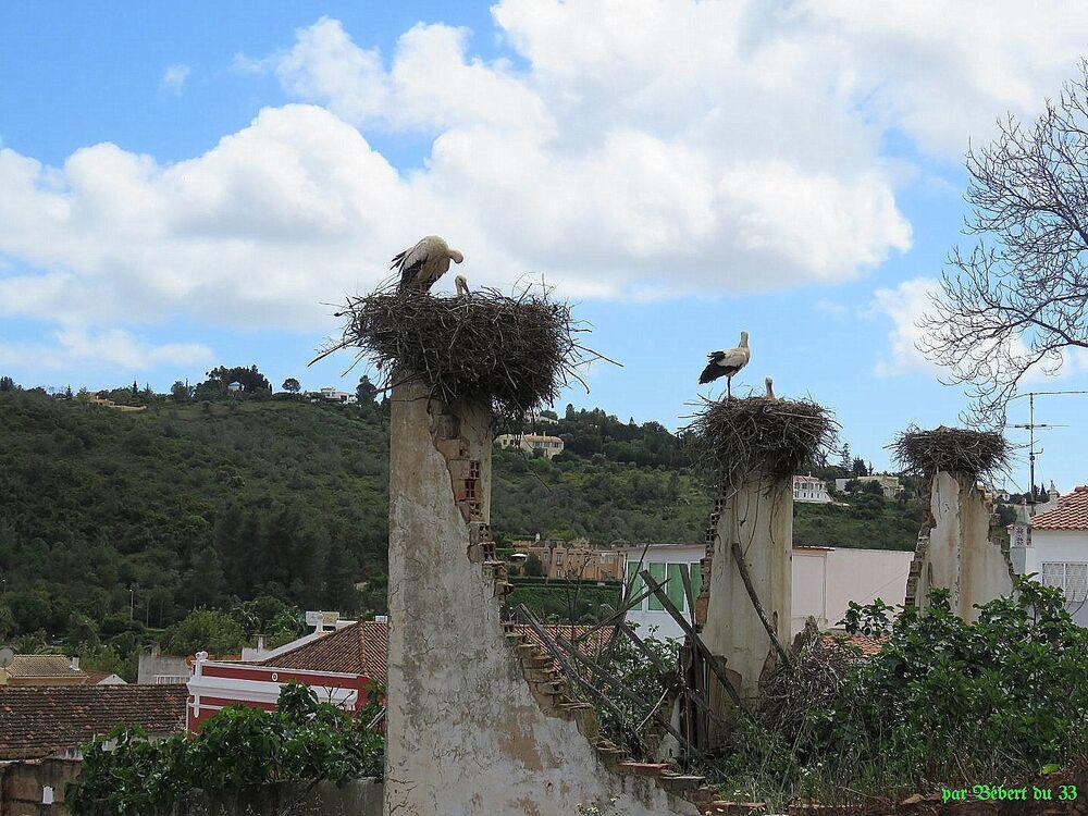 Silves au Sud-Portugal -2
