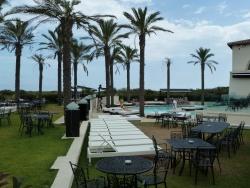 Il Pulcino in Sardegna (2)