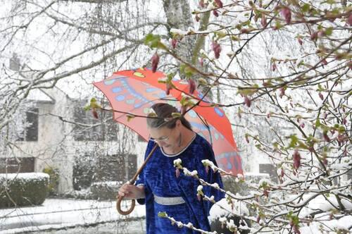 Parapluie geisha
