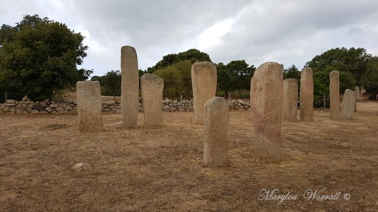 Corse : Plateau de Cauria 1/2