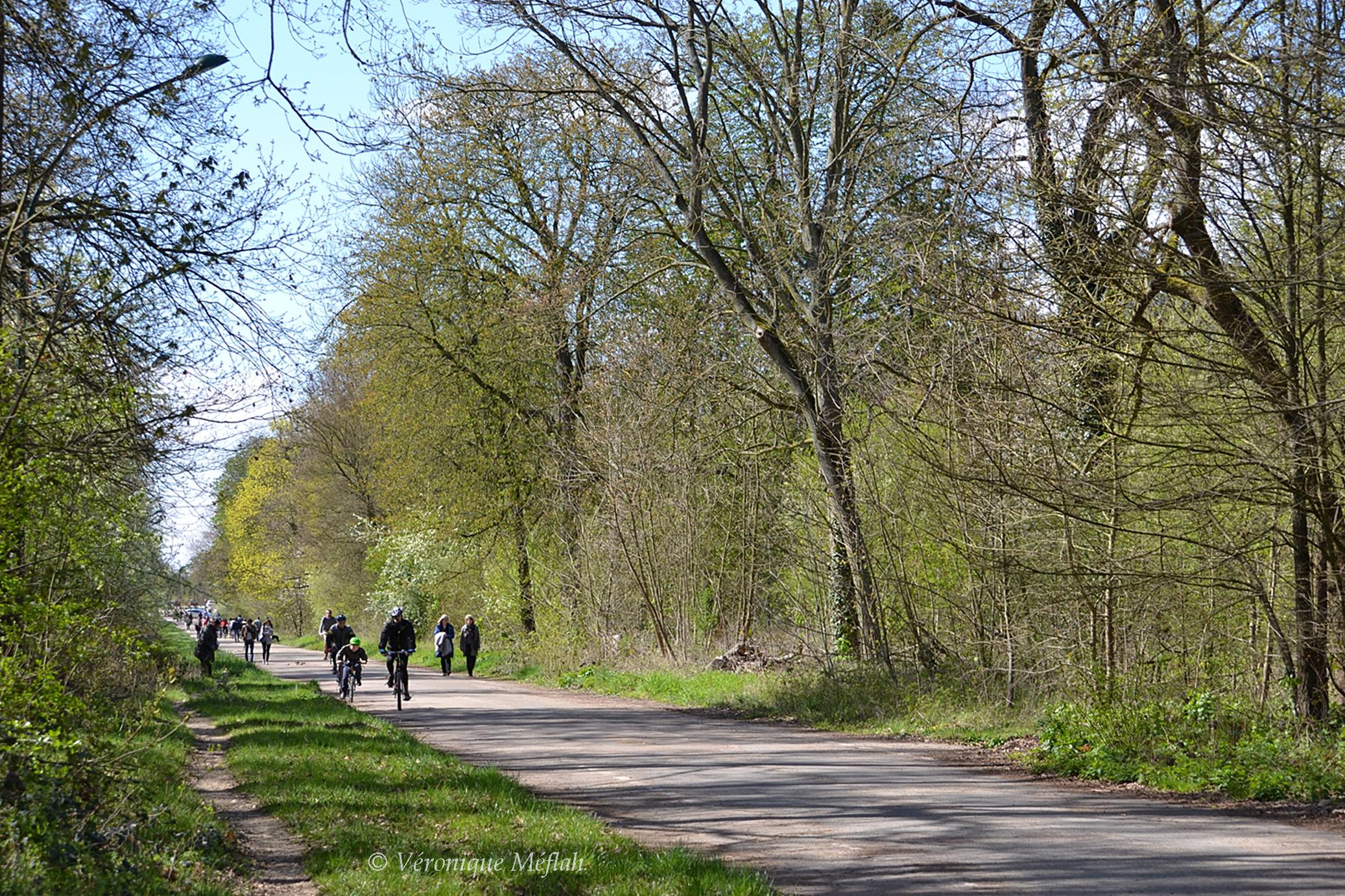 Location Vélo Bois De Vincennes - Histoire du Bois de Vincennes Une fleur de Paris