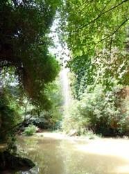 BARJOLS vallon des Carmes (11)