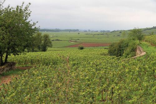 Bourgogne et alors
