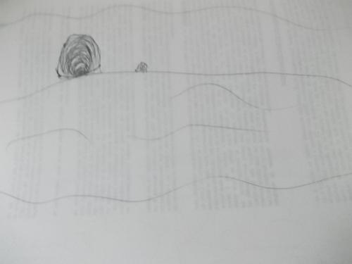 les Royaumes de Feu cycle 3 (suite)