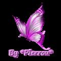 Fond papillons fleurs sans démarcation