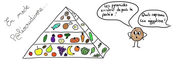 Pyramide Paléocrudivore