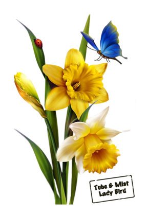 fleurs p.2