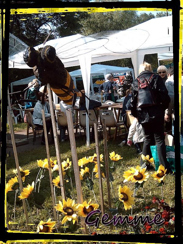 abeille, Nature en Fête, Ste-Foy-lès-Lyon
