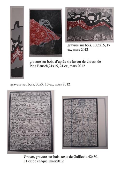 Travaux 2012