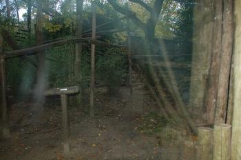 dierenpark amersfoort d50 2011 131