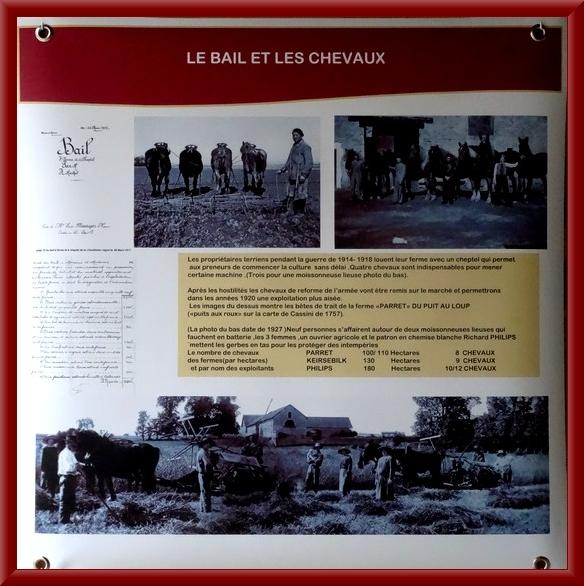 Les Flamands dans le Châtillonnais, une immigration agricole durant le conflit de 1914-1918
