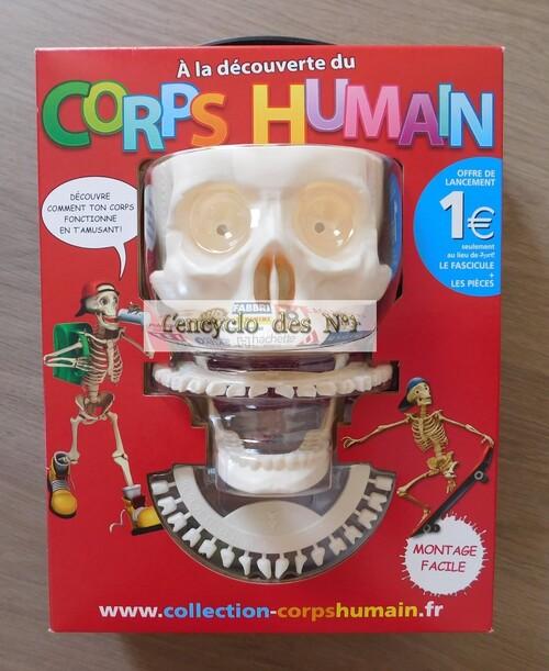 N° 1 À la découverte du corps humain - Lancement