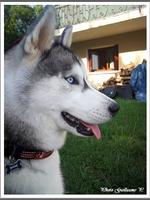 Naïko (7 mois)
