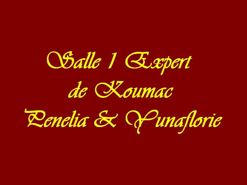 Salle 1 Experts de Koumac Penelia Yuna
