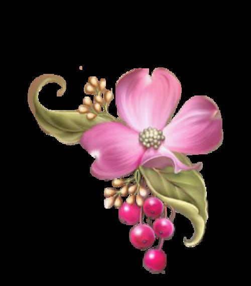 oiseau sur fleurs roses