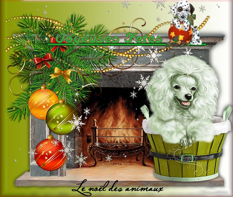 Joyeux Noël aux animaux ;-))