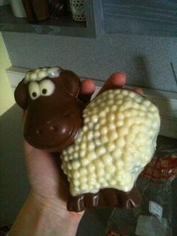 Les moutons sont des stars (2)