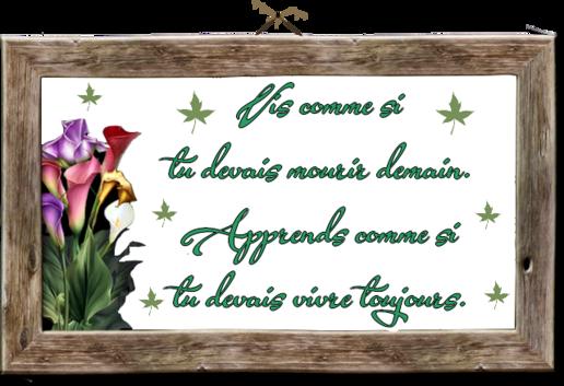 **Un bonjour fleuri**Coloriages