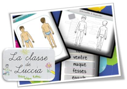 Vocabulaire - Les parties du corps, les 5 sens