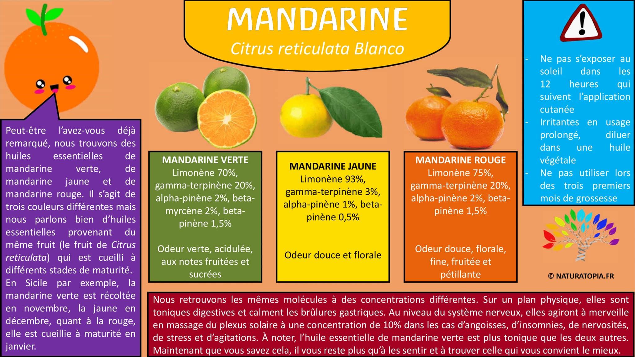 Mandarine Citrus reticulata Blanco Fiche HE Naturatopia