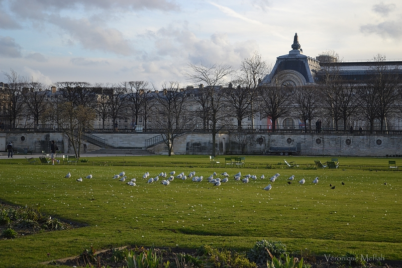 Les photos du weekend : au Jardin des Tuileries