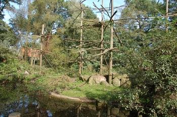 dierenpark emmen d50 069