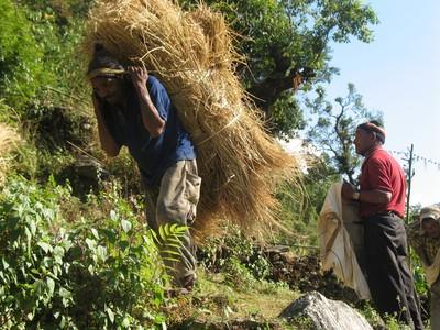Blog de beaulieu : Beaulieu ,son histoire au travers des siècles, Trek au Népal.. Octobre 2008.. Balcon des Anapurnas