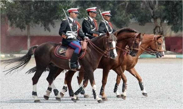 S.A.R. le Prince Héritier Moulay El Hassan préside l'ouverture de la 10e édition du Salon du cheval d'El Jadida