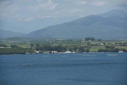 Etang de Diana ( Corse )