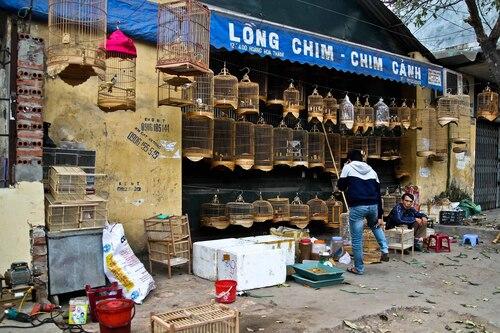 Villages d'artisans 4:  Chuong Vac, les cages à oiseaux