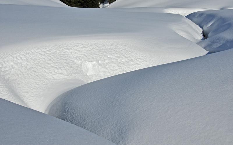 Vues d'hiver : le Praz-de-Lys (#2)