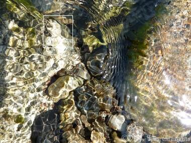 Les émanants : les ondines