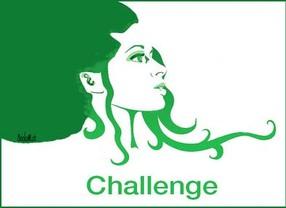 Récapitulatif de mes Challenges
