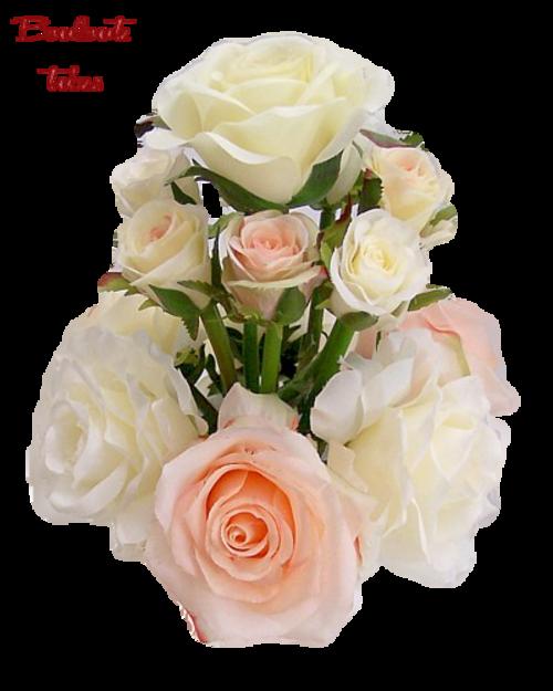 De jolies roses.......